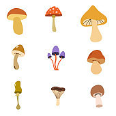 Poisonous and edible mushrooms.