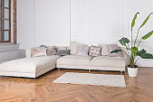 Modern luxury stylish apartment interior in pastel colors. a very bright room, daylight. white walls, wooden parquet floors, carpet.Bright living room with sofa, potted plant