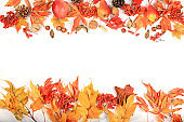 Frame with maple leaves, pine cones, nuts, apples, pears and rowan berries, autumn abstract composition with place for text, thanksgiving day concept, seasonal background