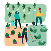 People doing agricultural works on vegetable patch. Vector flat illustration. Gardening concept. Agritourism concept