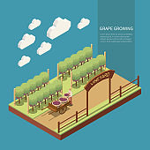Wine Production Isometric Composition