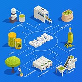 Olive Production Isometric Flowchart