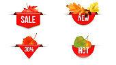 Seasonal autumn sale template.