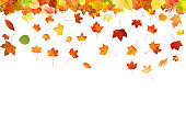 falling colored autumn leaves isolated on white background