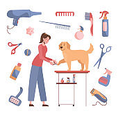 The woman cuts the claws of the golden retriever. Dog grooming. Vector illustration isolated on white background. Cartoon style. Care products around the perimeter, shampoos, nippers, combs, scissors