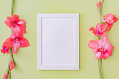 Mockup with a white frame and pink flowers on a green background