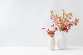 Home interior with decor elements. Colorful autumn leaves and red berries in a vase on a light background