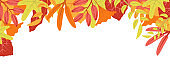 Autumn nature background with leafage pattern concept. Horizontal web banner with orange, red and yellow leaves. Autumnal colourful elements border. Vector illustration in flat design for website
