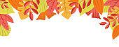 Autumn nature background with leafage pattern concept. Horizontal web banner with autumnal leaves. Fall colourful plants border isolated on white. Vector illustration in flat design for website