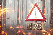 Climate Change warning sign in a burning forest