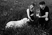 On summer evening on walk, pregnant couple sitting among grasses shows their Labrador ultrasound of unborn child.Black and white photo. Modern methods of examination.