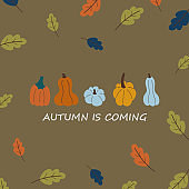 Autumn card poster template with pumpkins vector