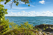 Gorgeous view of nature landscape on calm summer day. Baltic sea shore with green trees and plants on blue sky med white clouds background. Sweden.