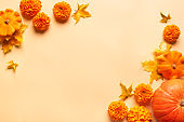 Autumn composition with pumpkins, flower and yellow maple leaves