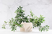 Summer showcase with set wooden cube podium with green branch of tree in sunlight with shadow on white board and grey marble wall for cosmetics product display.
