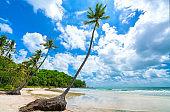 Seascape with tropical palms on beautiful Sao sandy beach