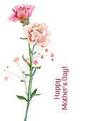 Vertical Mother's Day, Victory Day card with carnation: red, pink, flowers, twigs gypsophile, white background. Templates for design, vintage botanical illustration in watercolor style, vector