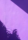 Summer and purple aesthetic. Stylish minimalist wallpaper. Palm shadows