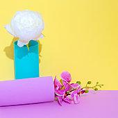 Decor flowers in vase. Minimalist scene. Bloom, Spring,summer, greeting card, invitation concept.  Still life composition