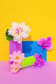 Decor flowers still life Minimalist scene. Bloom, Spring,summer, greeting card, invitation concept.