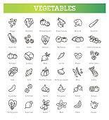 Basic vegetables thin line icon set
