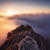 Beautiful landscape, misty fog on mountain slopes. Abstract view with sun