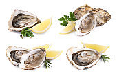 Set with fresh raw oysters on white background