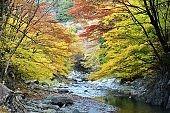 Oashi valley, Kanuma, Tochigi, in autumn
