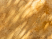 Abstract Leaves and Tree branch shadows on sunny day on beige concrete wall texture background