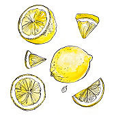Lemons painted with mascara on a white background. Watercolor sketch of fruit.