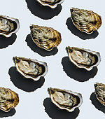 Open oyster Fin de Claire on gray background Pattern