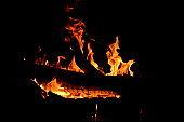 Fire in the night burning branch. Burning branch