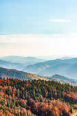 Nature Carpathians, Ukraine mountain wilderness landscape, panorama hills mountain range covered with forest, warm autumn day.
