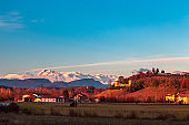Winter sunset in the vineyards of Collio Friulano