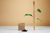 Wooden bamboo toothbrush with leaves and black charcoal toothpaste as Eco-friendly creative concept. Natural organic bathroom beauty product.