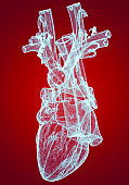 Heart, ventricles, human anatomy, cardiac ventricles. Human body, section. X-ray view. HUD. Advanced Scientific Devices. Hologram. Scanner