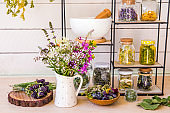 Lot of various herbal medicinal plants gathered and drying in room and dried herbs in glass jars on shelf. Herbalist concept. Fireweed, heal-all, woundwort, yarrow, cowslip, meadowsweet, pot marigold.