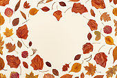 Autumn leaves layout on neutral beige background with copy space. Natural frame in form of heart from dry leaf in autumn season, fall season concept.