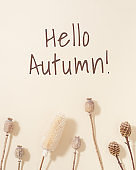 Autumn natural layout with assortment dry plants and lettered hello autumn on beige colored. Autumnal background