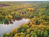 Aerial view of autumn forest in northern France