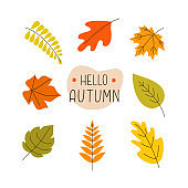 Autumn set colorful fallen leaves with lettering in the center on a white background