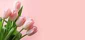 Bouquet of red tulip on pink. Floral pattern. Space for text. Mother day.