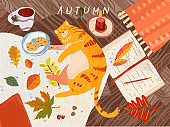 cozy autumn. Vector illustration of still life, animal cat, leaves, coffee, wooden table, book, plaid, rug, dessert. Drawings for background, postcard or banner.