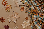 Autumn background decoration from dry leaves Flat lay, top view for Autumn, fall, Thanksgiving concept.