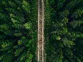 Aerial view of empty railway track through green forest in Finland