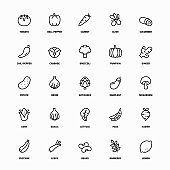 Outline Icon Set of Organic Vegetables