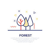 Forest Outline Icon