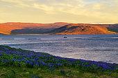Sunset above fjord landscape near Patreksfjordur in the Westfjords, Iceland