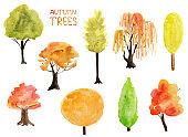 Autumn trees watercolor elements set.