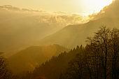 Sunset nature landscape